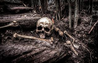 creepy-dark-fear-grave-534590.jpg
