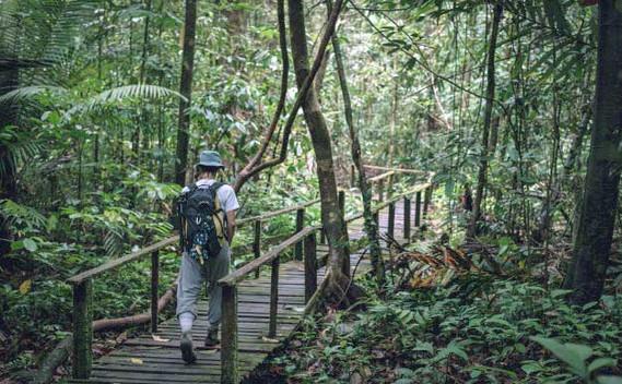 kubah-national-park-07jpg