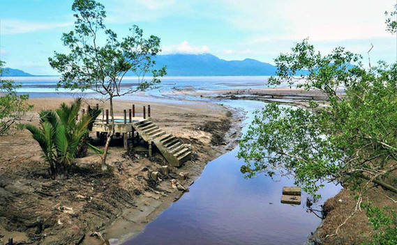 bako-national-park-low-tide-riverjpg