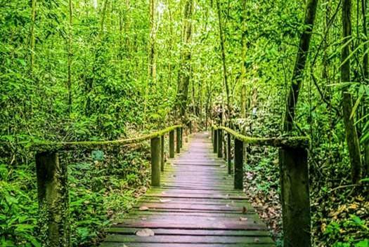 kubah-national-park-05jpg