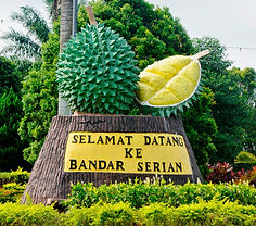 51trip to Btu, durian.jpg