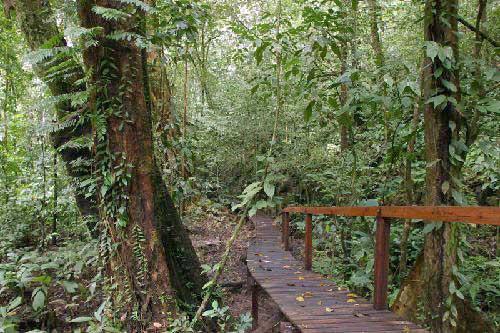 kubah-national-park-06jpg