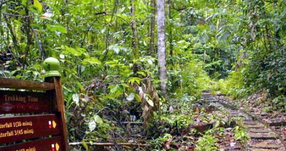 gunung-gading-national-park-04jpg
