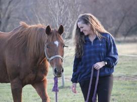 Se soigner grâce aux chevaux