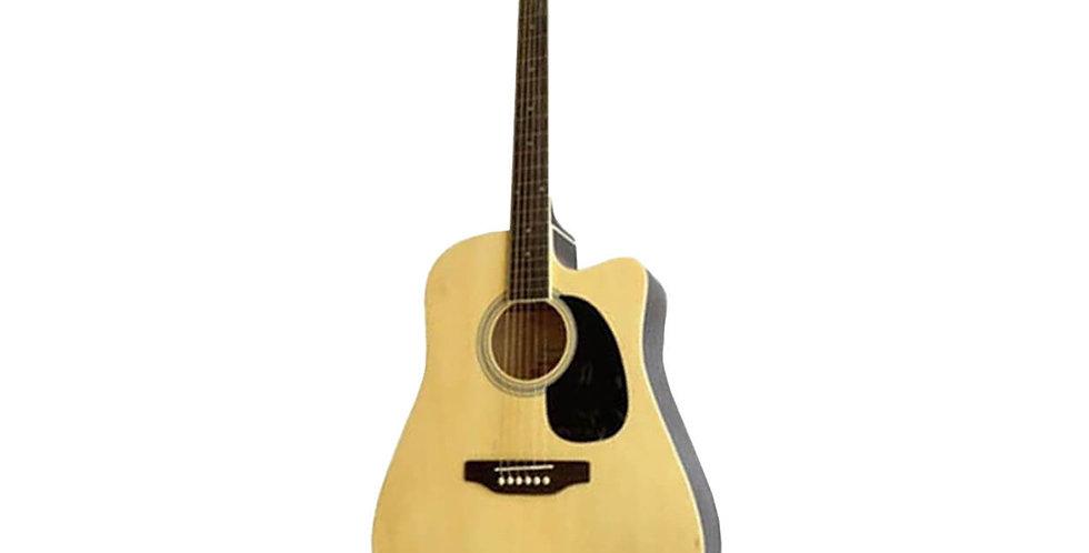 Pluto HW41-201N Acoustic Guitar