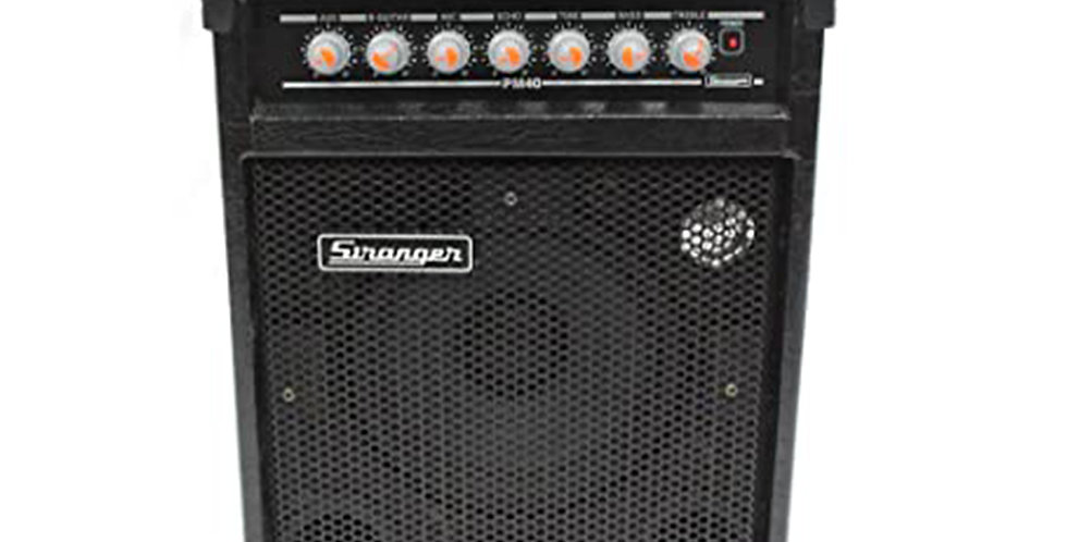 Stranger PM40 Musical Amplifier