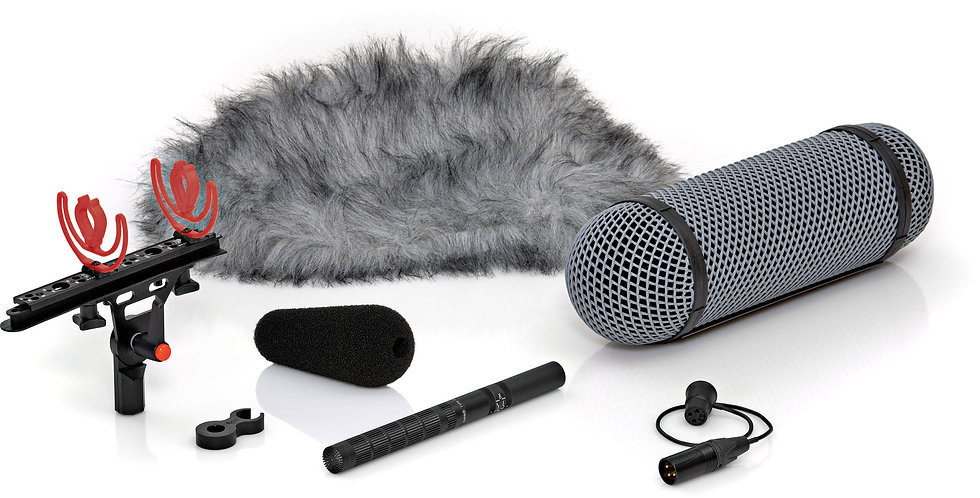 DPA 4017B-R Shotgun Mic with Rycote Windshield