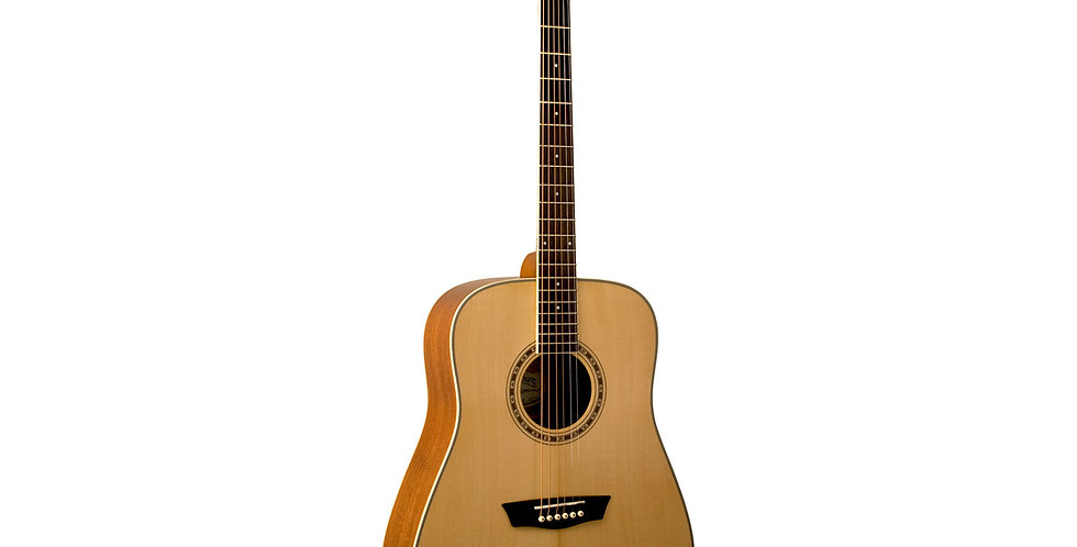 WASHBURN WD-10S Acoustic Guitar