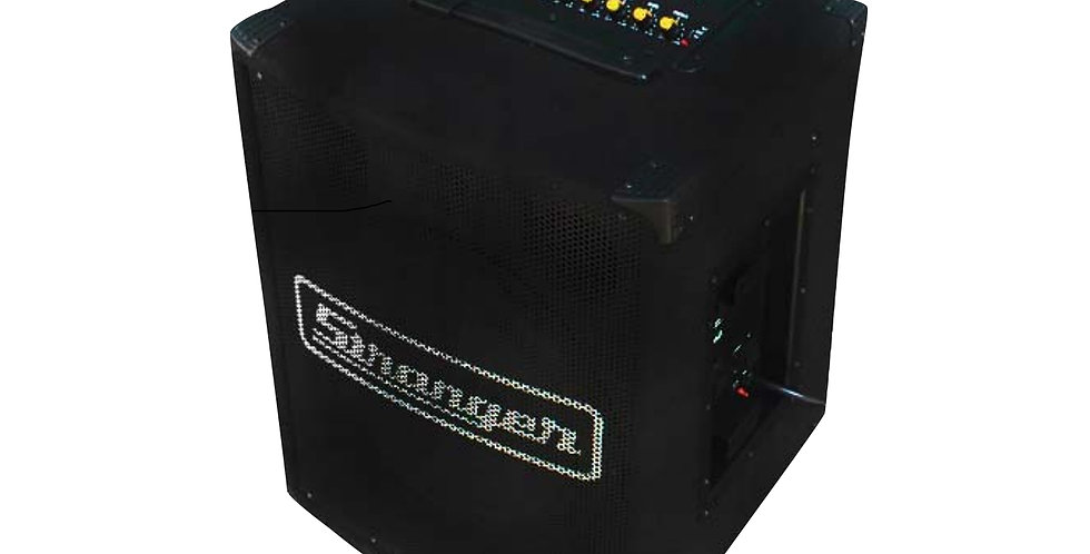 Stranger PM102 Musical Amplifier