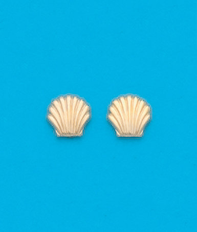 Small Shell Stud Earrings