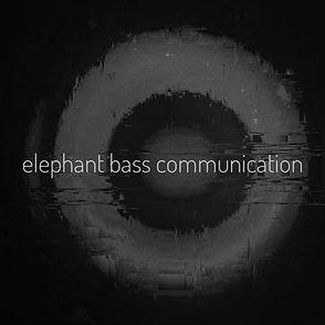 elephant bass communication