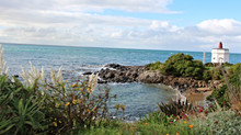 Southland's Beauty Is No 'Bluff'