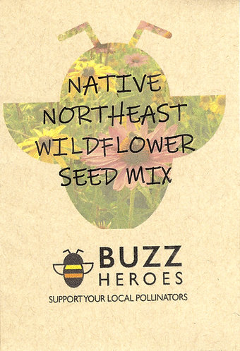Native Northeast Wildflower Seed Mix