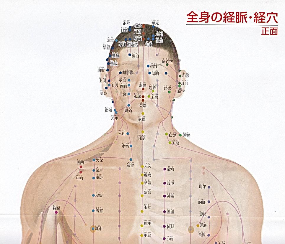 P3-1 全身の経脈・経穴(正面 頭部・胸部).jpg