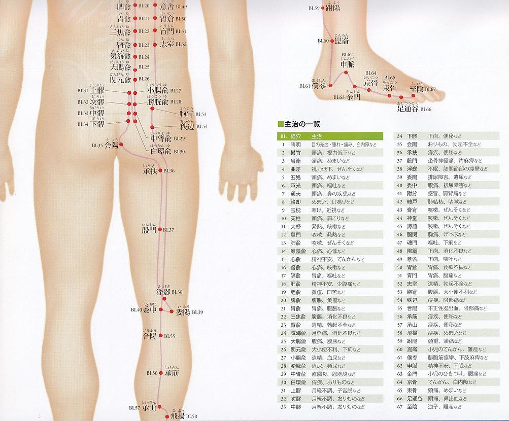 P23-2 足の太陽膀胱経(たいようぼうこうけい).jpg