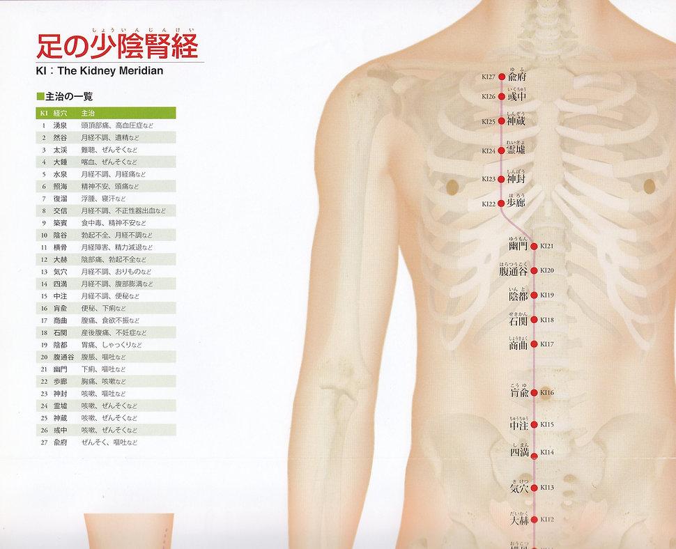 P25-1 足の少陰腎経(しょういんじんけい).jpg