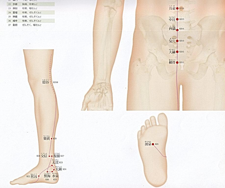 P25-2 足の少陰腎経(しょういんじんけい).jpg