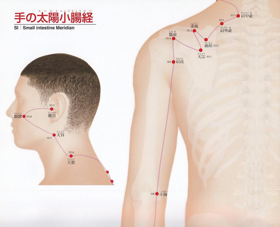 P21-1 手の太陽小腸経(たいようしょうちょうけい).jpg