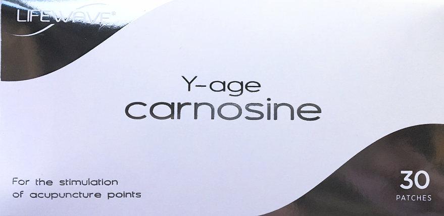 Y-Ageカルノシン (一般医療機器)1パック(30枚)
