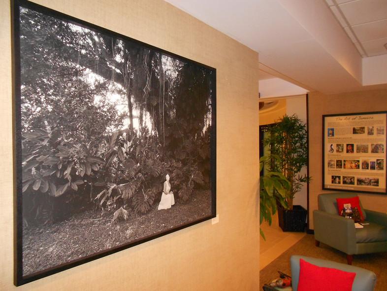 SPCG Lounge 2 Pic 2.jpg
