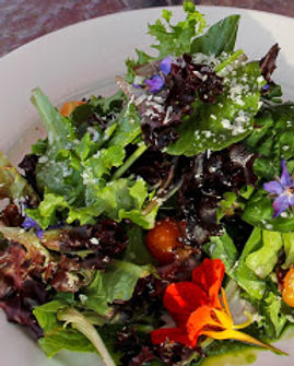 garden salad 2.jpg