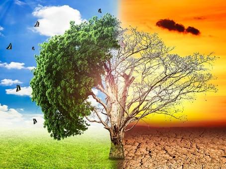 A polêmica do aquecimento global: afinal, ele existe ou não?