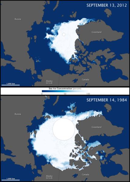 Gelo marinho polar com aquecimento global