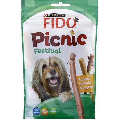 Fido picnic festival