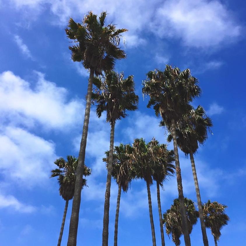 SEAOC Spring Trip: San Diego!
