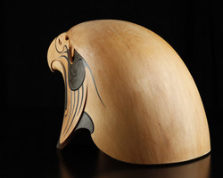 Karearea - Falcon