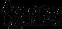 AMERICAN-EXCHANGE-Logo---transparent.png