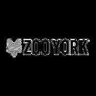 zoo york gray.png
