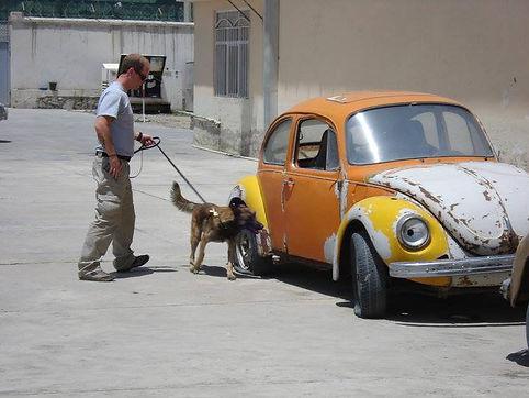 Stev Hutchinson, Sprengstoffspürhundeführer