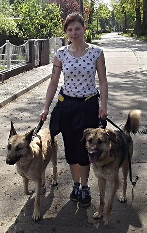 Sandy Hutchnson, Dogwalkerin