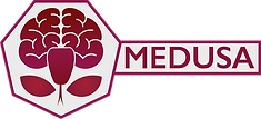 MEDUSA2.png