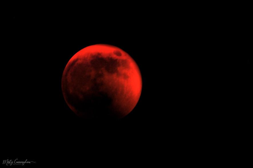 Wolf Blood Moon