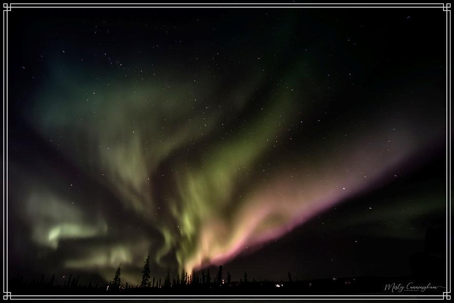 2019 Aurora 1