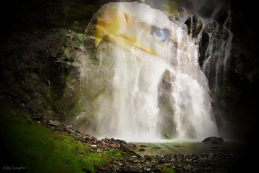 Eagle an Waterfall