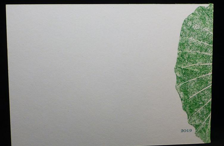 FEUILLES.rondeur II.09.jpg