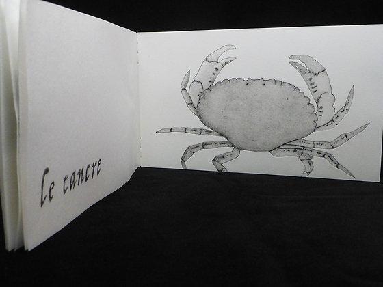 """Livre d'artiste :""""la nature et le pourtraict…"""""""