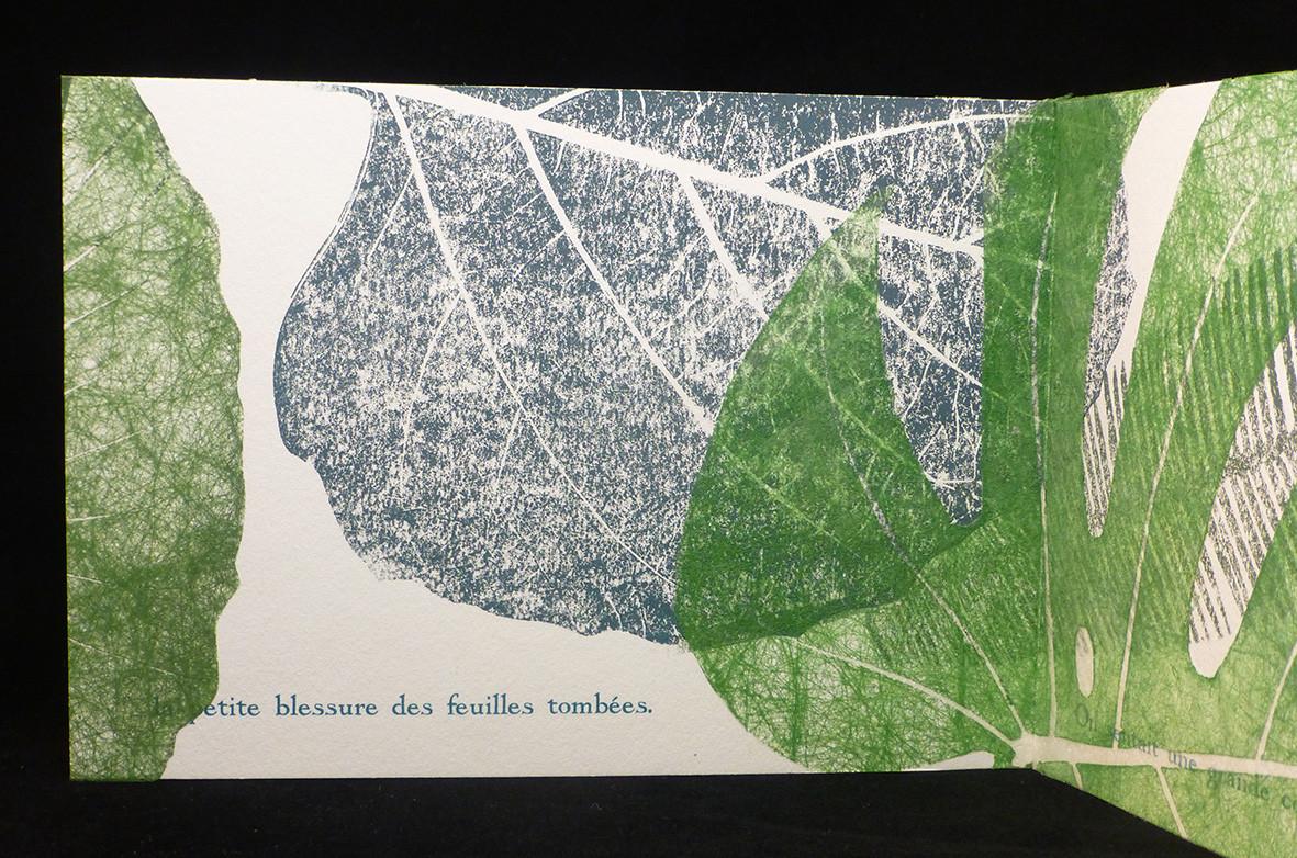 FEUILLES.rondeur II.11.jpg
