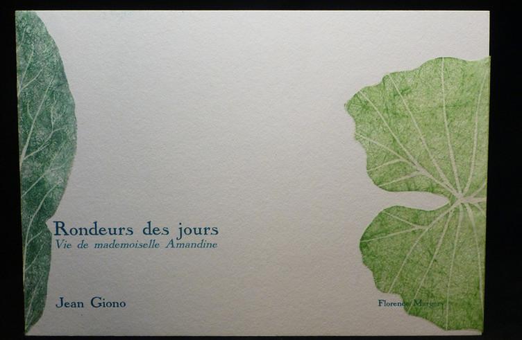 FEUILLES.rondeur II.03.jpg