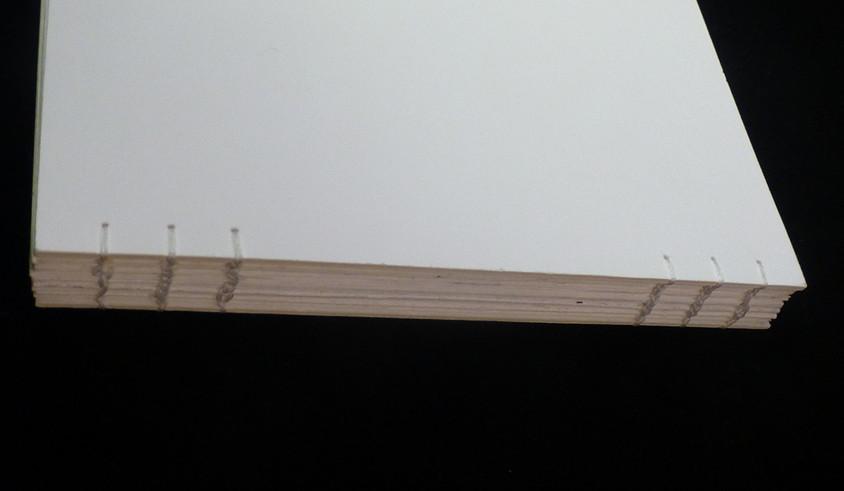 POISSONS.livre.I.04.jpg