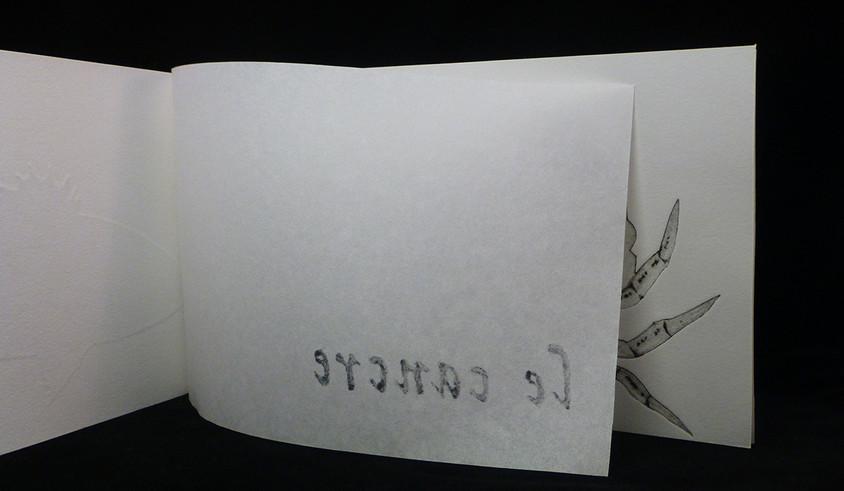 POISSONS.livre.I.31.jpg