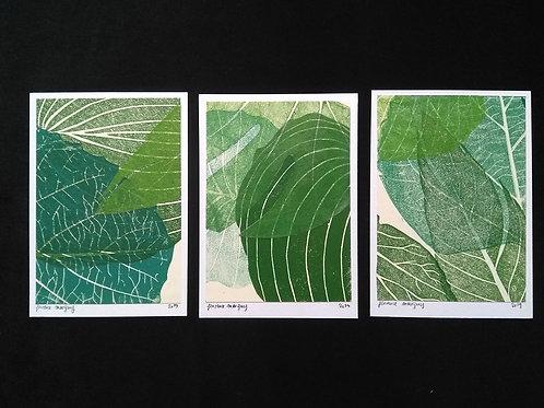 Lot de trois cartes postales: Feuilles