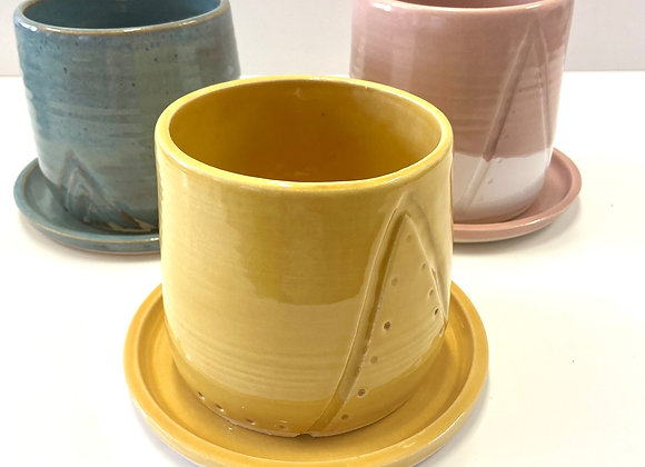 Carved plant pots with drainage saucers
