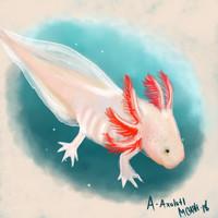 A for Axolotl