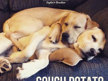 """O que é um """"couch potato""""?"""
