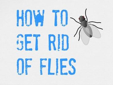 [IDIOM] Get rid of