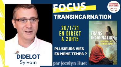 Transincarnation - Sylvain Didelot